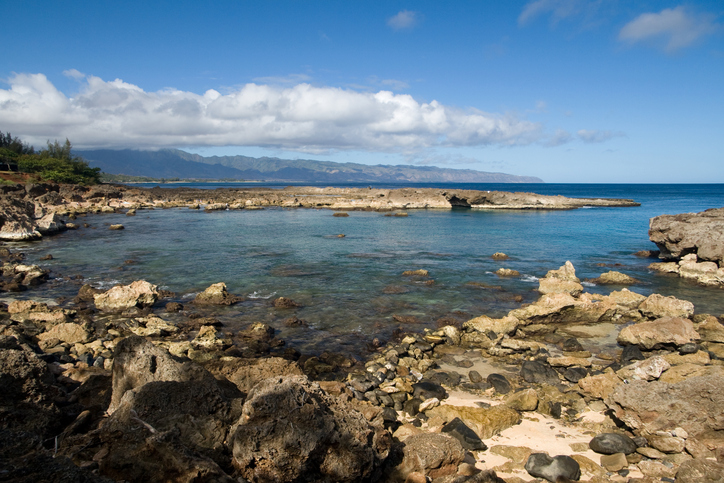 The second best snorkeling site in Oahu.