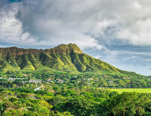 Condo market surges as the Oahu housing boom continues